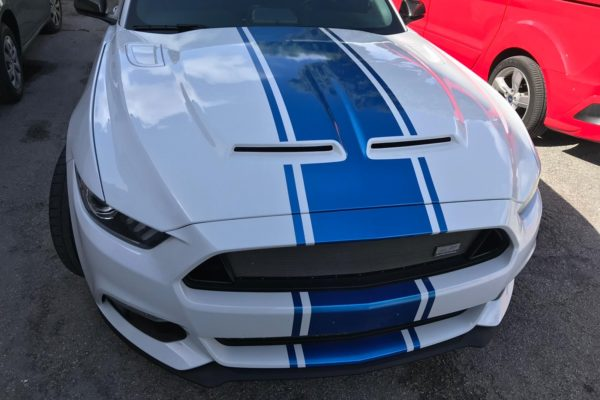 4944697b-64d7-4ccf-b285-f7f5f6fdf498Ppf paint protection film window tints in hollywood florida hallandale pembroke pines fort lauderdale